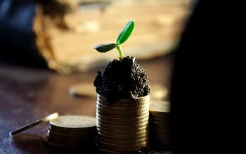 Geld, Münzen, Wachsen
