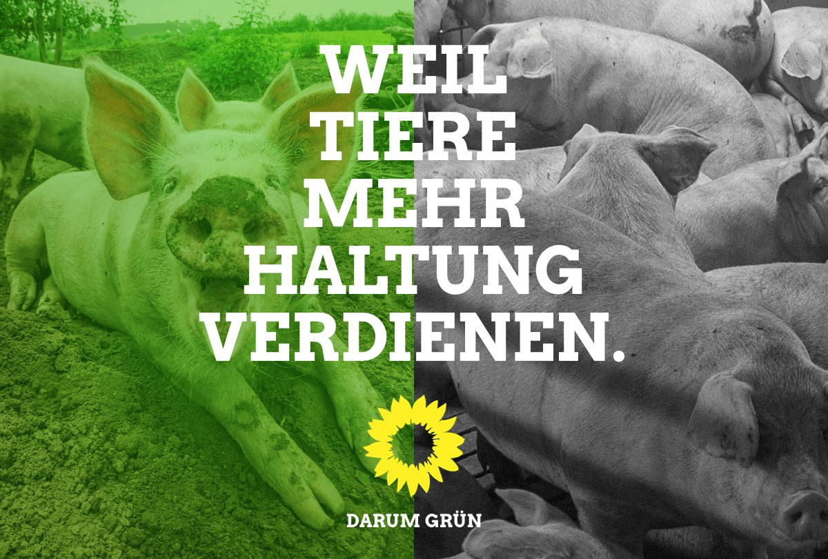 Warum die Grünen und nicht die CDU? Weil Tiere mehr Haltung verdienen